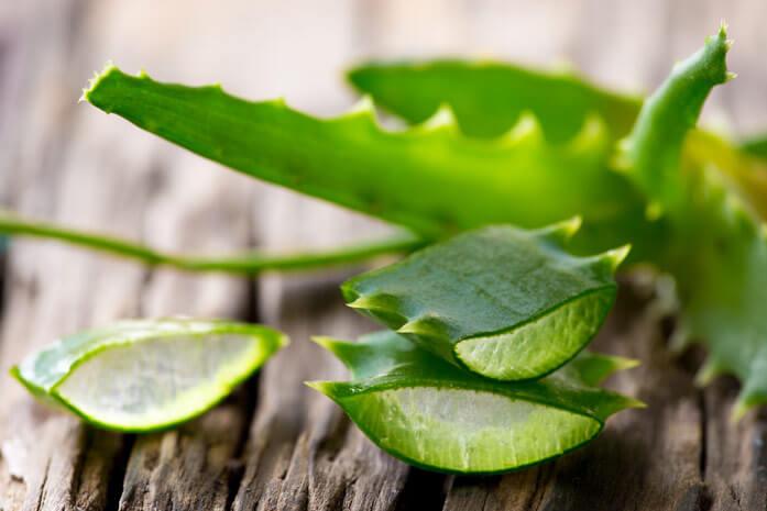 Алоэ вера - популярное естественное средство для решения многих проблем с кожей